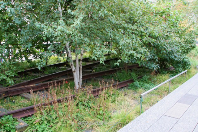 high-line-new-york-nueva