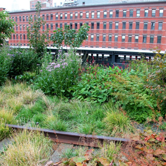 high-line-nueva-york-new