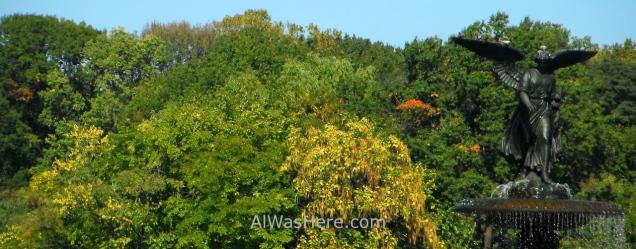 ... y en otoño