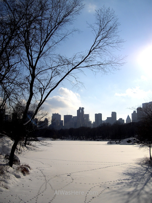 NUEVA YORK CENTRAL PARK 33, Lake frozen lago congelado invierno winter New York City