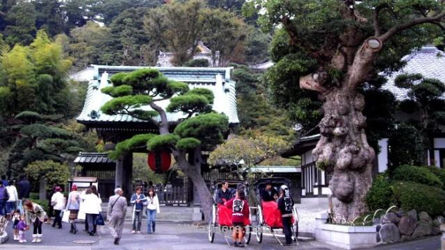 Hasedera Templo temple Kamakura
