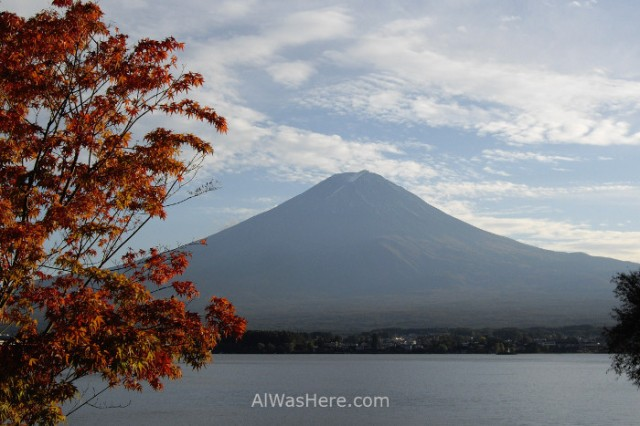 monte-fuji-fujiyama-arbol-y-lago-japon-mount-fuji-tree-lake-japan