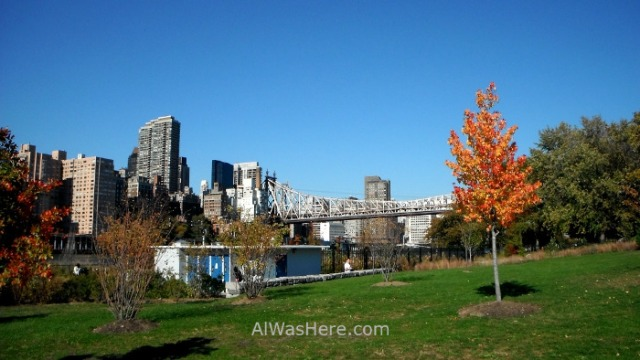 NUEVA YORK ROOSEVELT ISLAND 10. parque park New York City