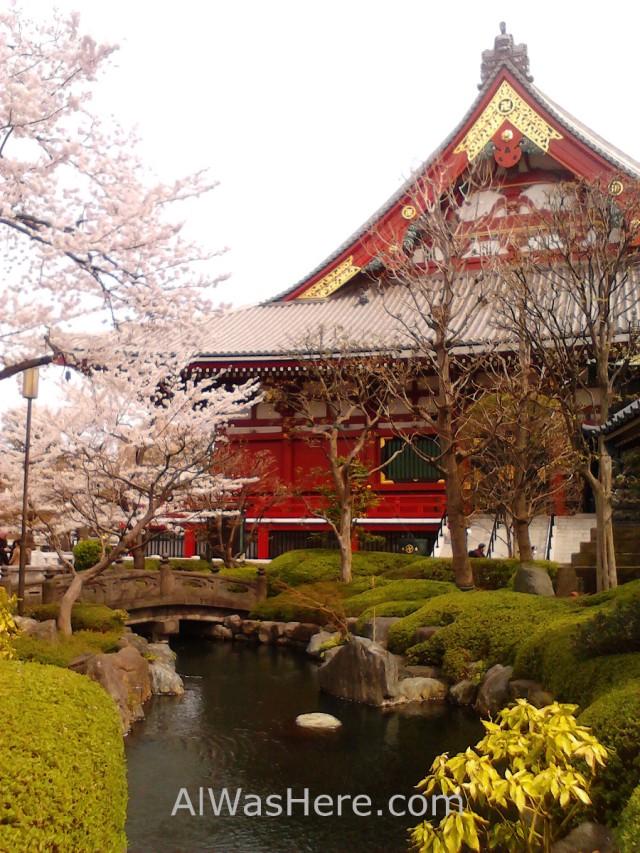 Hanabi, Senso-ji
