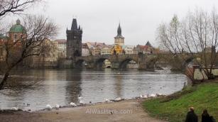 Vista del Puente de Carlos desde la orilla del río