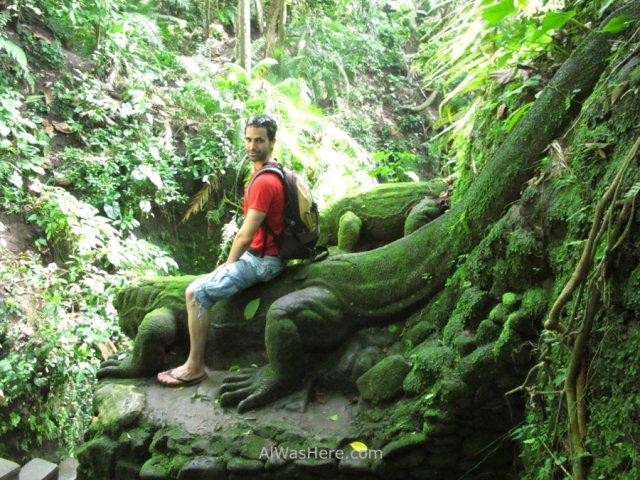 Dragones Komodo de piedra