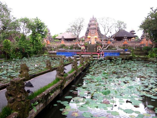 BALI templo estanque lotos lotus pond Taman Saraswati