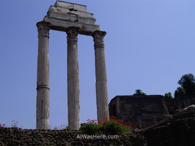 9-columnas-en-el-foro-roma-italia-columns-forum-roman-rome-italy