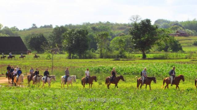 0. Montar a Caballo en el Valle de Viñales, Cuba. Riding horses Vinales Valley
