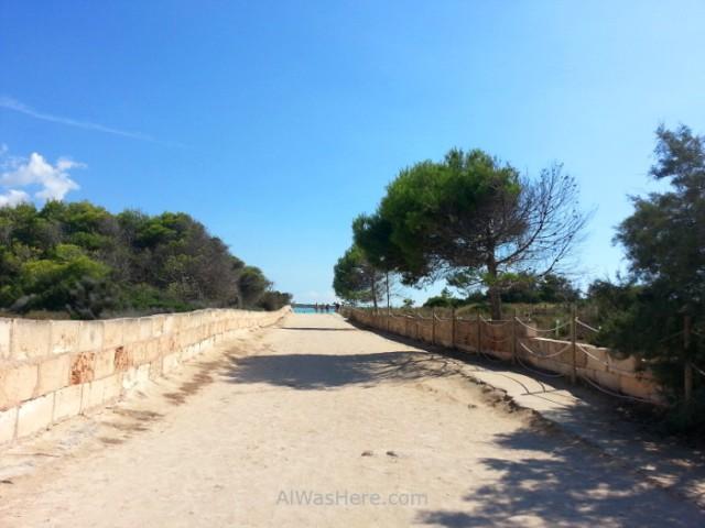 3. Entrada a la playa desde Ses Covetes, Es Trenc Mallorca, Baleares, España. Beach, Spain