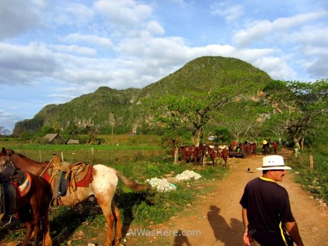 Viñales 4. Zona de reunión de los caballos, Valle Viñales, Cuba. Horses meeting point, Vinales Valley