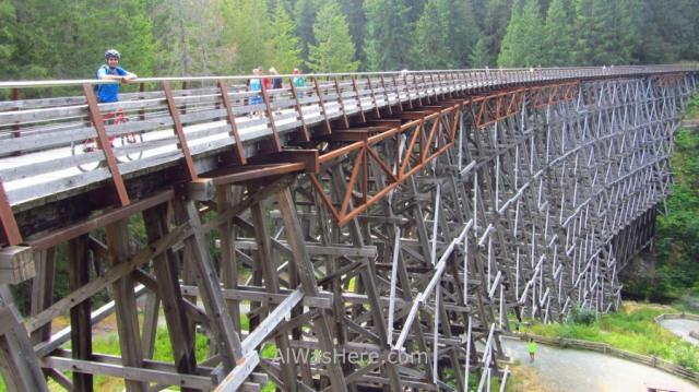COWICHAN VALLEY TRAIL 4. Alwashere en Kinsol Trestle, Isla de Vancouver, Columbia Britanica, Canada. Island, British