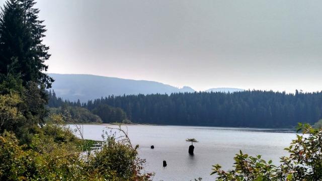 Juan de fuca 13. Botanical Beach. Fairy Lake lago Marine Trail, Isla de Vancouver, Columbia britanica, Canada. Island, British.