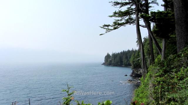 Juan de Fuca 15. Marine Trail, Isla de Vancouver, Columbia Britanica, Canada. British, Island forest