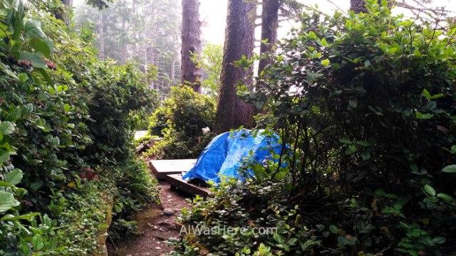 JUAN DE FUCA 30. Tienda de campaña en Sombrio Beach, Marine Trail, Isla de Vancouver, Columbia Britanica, Canada. British, Island. Tent
