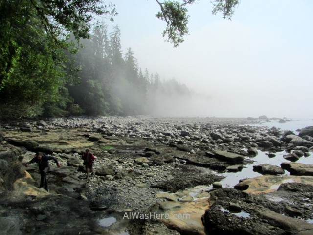 JUAN DE FUCA 31. Playa de Sombrio Beach, Marine Trail, Isla de Vancouver, Columbia Britanica, Canada. British, Island. (2)