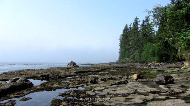 JUAN DE FUCA 31. Playa de Sombrio Beach, Marine Trail, Isla de Vancouver, Columbia Britanica, Canada. British, Island. (3)