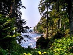 La costa vista desde el Trail