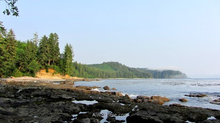 JUAN DE FUCA 39. Paisaje de costa, Marine Trail, Isla de Vancouver, Columbia Britanica, Canada. British, Island. Coastal landscape
