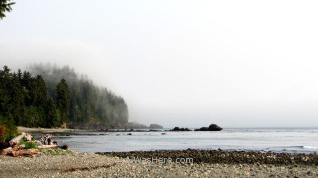 JUAN DE FUCA 40. Sombrio Beach Paisaje de costa, Marine Trail, Isla de Vancouver, Columbia Britanica, Canada. British, Island. Coastal landscape
