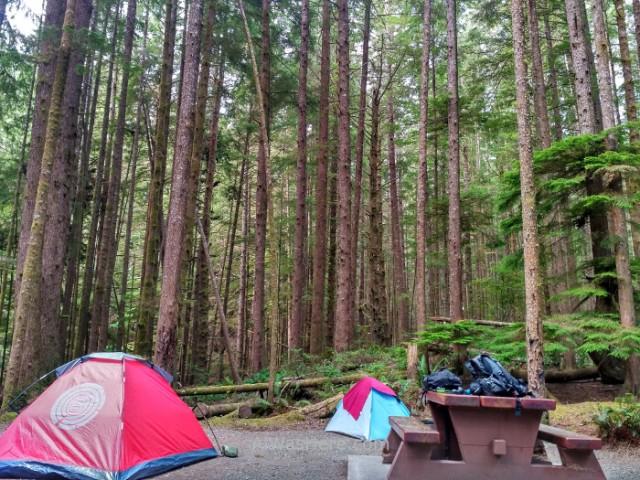 JUAN DE FUCA 5. Nuestras tiendas en China Beach Campground Juan de Fuca Marine Trail, Isla de Vancouver, Columbia Britanica, Canada. Island, British