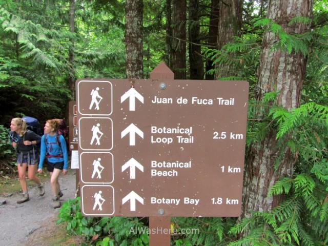 Juan de fuca 6. Botanical Beach. Marine Trail, Isla de Vancouver, Columbia britanica, Canada. Island, British.