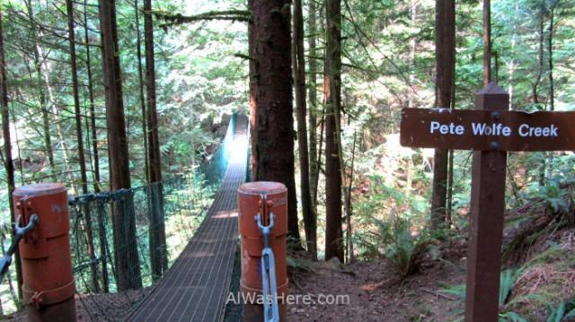 Juan de Fuca 6. Puente colgante en el Pete Wolfe Creek Marine Trail, Isla de Vancouver, Columbia Britanica, Canada. British, Island suspension bridge