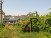 Una escalera abandonada cubierta de vegetación en algún punto del trayecto hacia el jardín