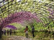 Otra sección del primer túnel