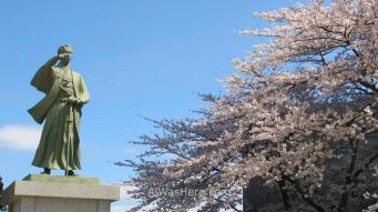 Estatua de un noble feudal junto a cerezos