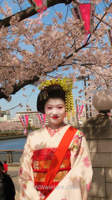 Sakura Hanami 27. Geisha Maiko Flores cerezo parque Sumida Tokio Japon. Cherry blossoms park Tokyo Japan