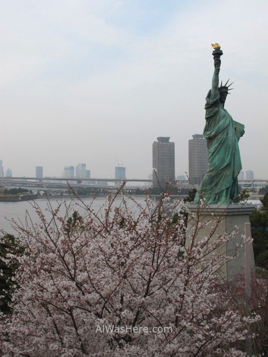 Sakura Hanami 45. Flores cerezo Odaiba Tokio Japon. Cherry blossoms Tokyo Japan