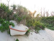 Bote abandonado cubierto de arena y vegetación en Ooganeku Beach