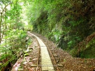 Antigua vía de tren reconvertida en el sendero Arakawa