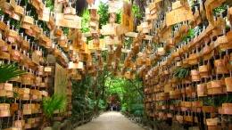 Precioso túnel de tablillas de madera Ema en el santuario de Aoshima