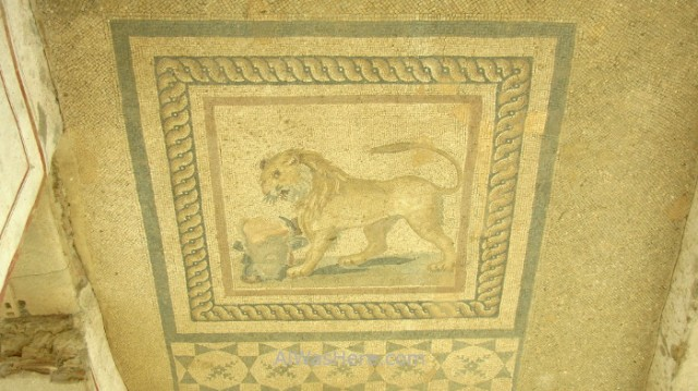 EFESO 7. Casas adosadas mosaicos, terraced houses Turquia. Ephesus Turkey.