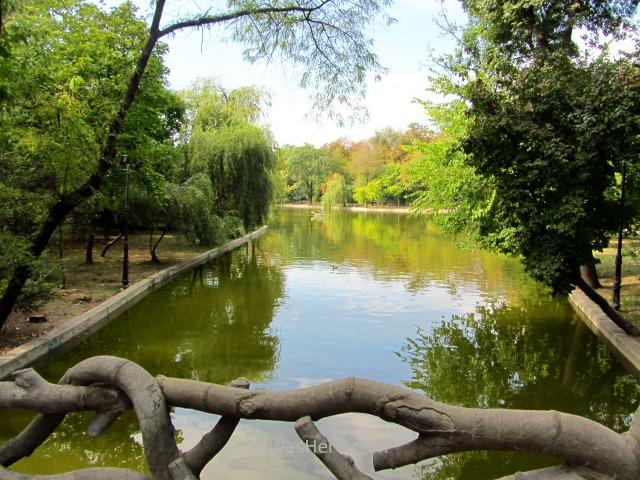BUCAREST itinerario 7 Cismigiu park parque, Bucharest Rumania. Romania (2)