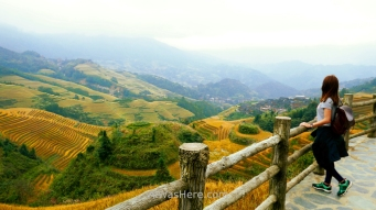 Pili en el mirador Thousand Layers to Heaven, Dazhai, Longji, Guilin