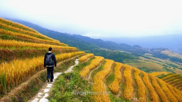 TERRAZAS ARROZ LONGJI transporte. 6. camino, trail path,rice terraces Dazhai, Guilin, China alwashere