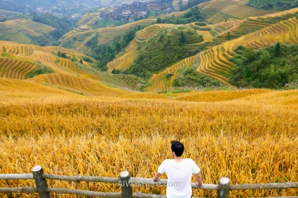 En el mirador Music from Paradise, terrazas de arroz en Dazhai, Longji, Longsheng, Guilin, China