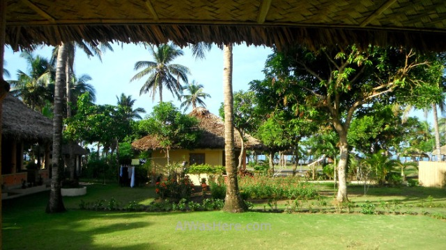DONSOL INFORMACION 2 alojamientos Dancalan beach playa accommodation information Philippines Filipinas (2)