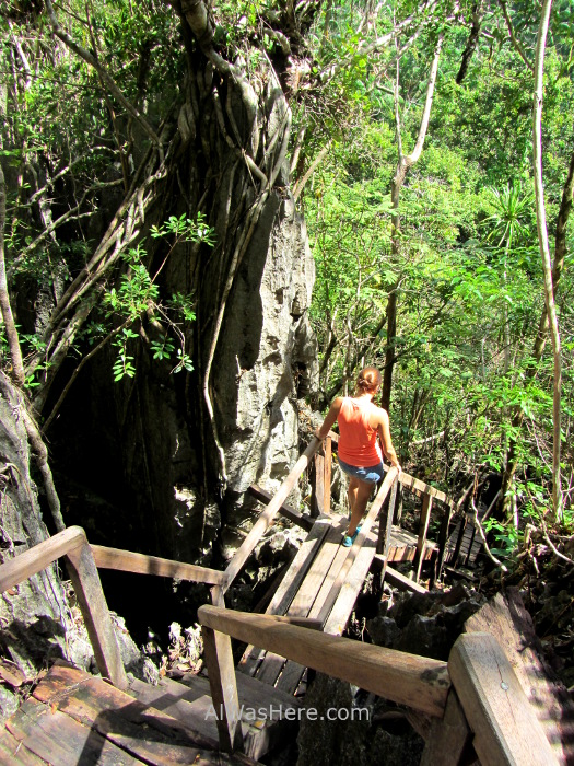 SABANG RIO SUBTERRANEO PUERTO PRINCESA 1. Jungle Trail. Underground River New 7 Wonders of Nature Maravillas Naturaleza, Palawan, Filipinas Philippines