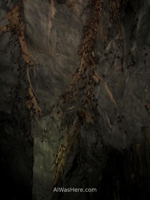 SABANG RIO SUBTERRANEO PUERTO PRINCESA 3. cueva. Underground River New 7 Wonders of Nature Maravillas Naturaleza, Palawan, Filipinas Philippines murcielagos bats
