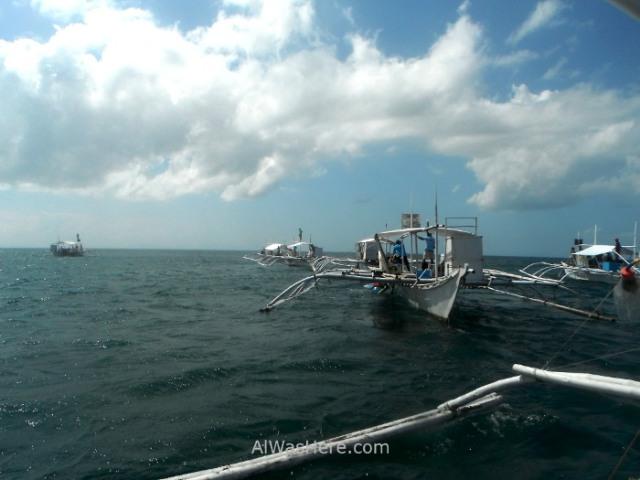 DONSOL TIBURONES BALLENA 2. Whale Sharks, botes boats bangkas Filipinas, Philippines