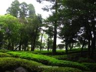 Jardín de un hotel-spa en Kirishima Onsen