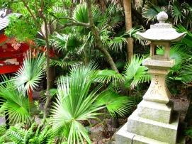 Densa vegetación cerca del santuario