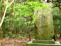 Roca grabada en las inmediaciones del santuario