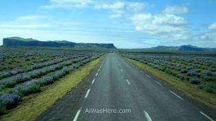 Carretera convencional en un día soleado
