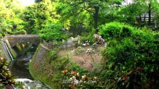 Jardín Sengan-en en el que se ve un puente de piedra
