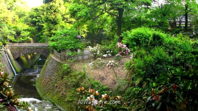 KAGOSHIMA CIUDAD 4. Jardin Senganen Garden Kagoshima city Japan Japon (3)